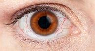 Dry Eye Syndrome | Common Vision Disorders | Family Eye Care